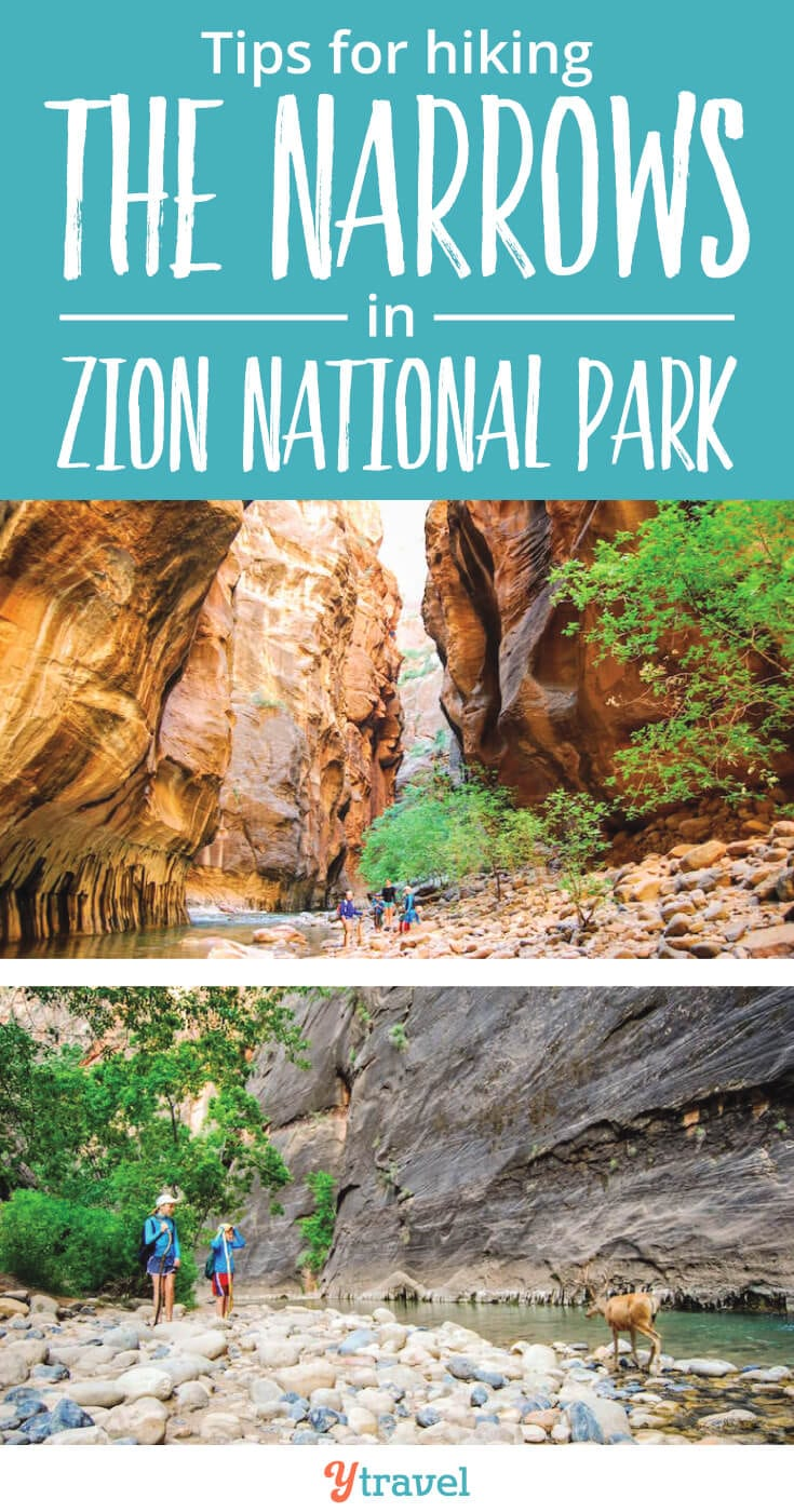 Zion Narrows Hike - 18 tips for hiking the Narrows in Zion National Park, with or without kids.