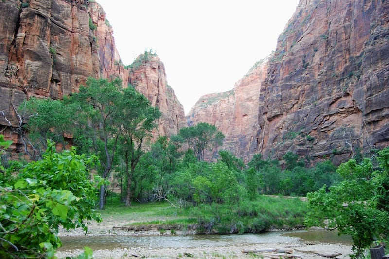 18 Helpful Tips for the Zion Narrows Hike with kids (or