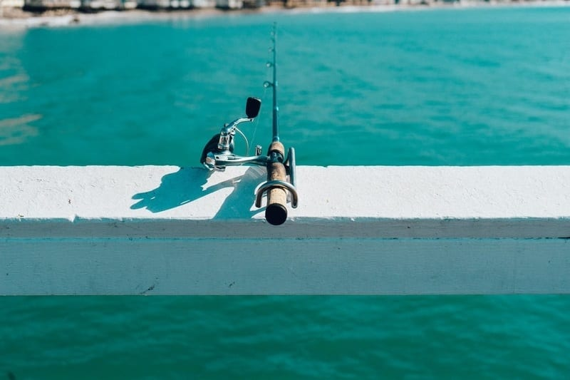 Make sure to do some fishing while your visiting Busselton.