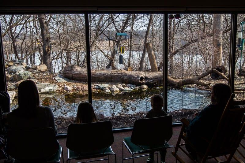 Richardson Nature Center, Minneapolis