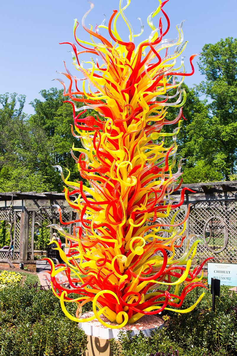 Chihuly at Biltmore Estate and Gardens