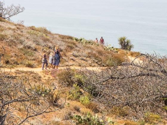 Torrey Pines State Reserve La Jolla San Diego