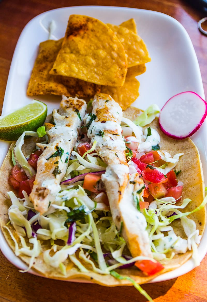 Yummy fish tacos at Wonderland Ocean Pub in Ocean Beach, San Diego