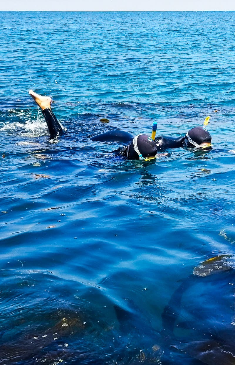 Snorkeling at Channel Islands National Park, California