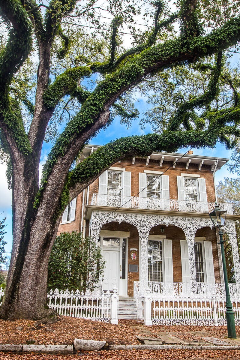 Explore the historic DAR House in Mobile, Alabama