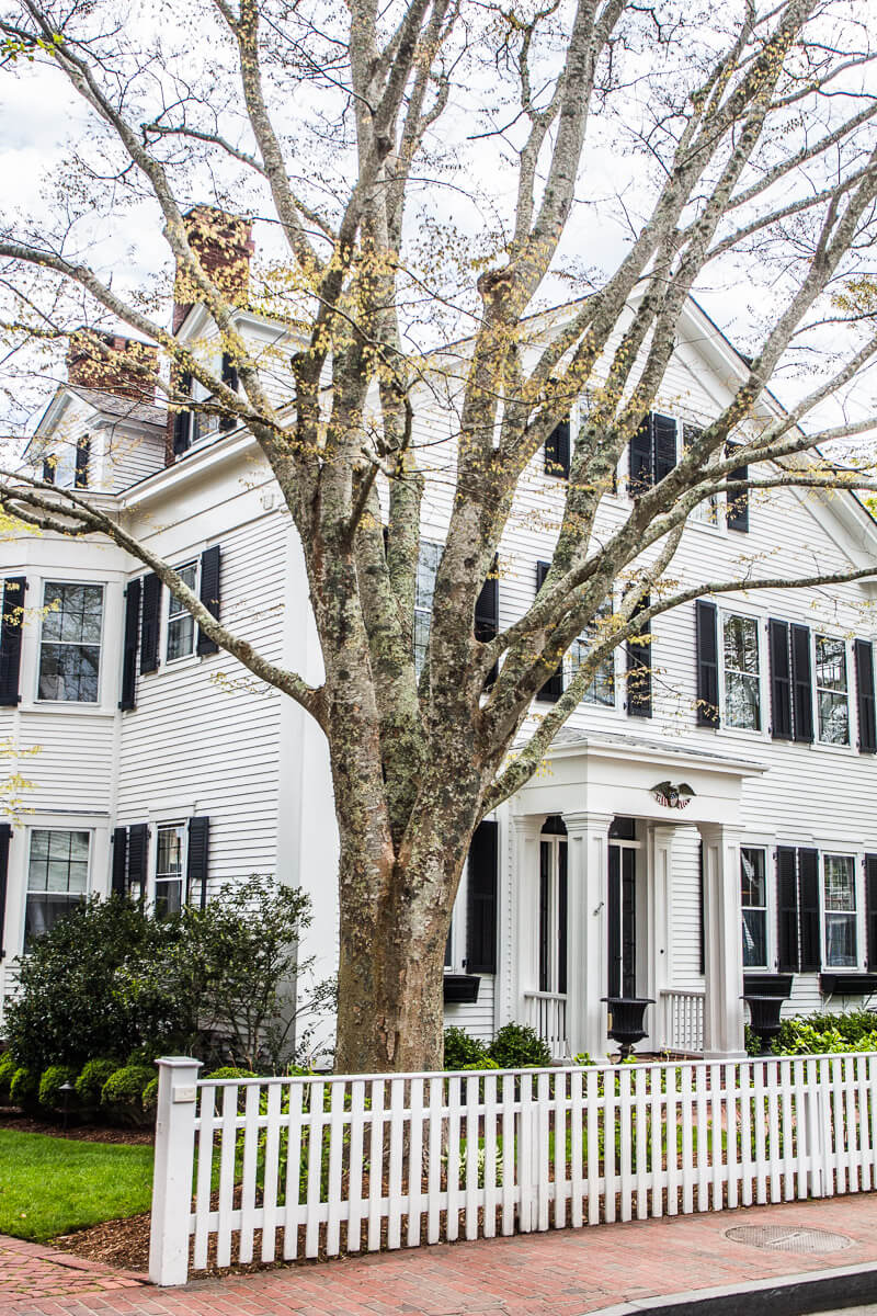 Beautiful town of Edgartown on Martha's Vineyard, Massachusetts