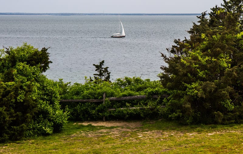 View from East Chop Lighthouse