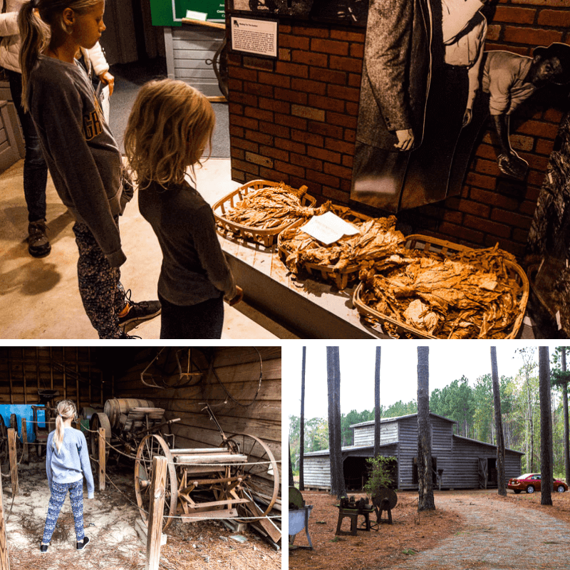 Tobacco Farm Life Museum, Kenly
