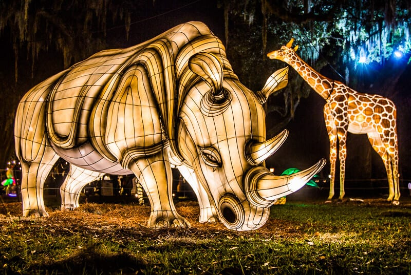 Audubon Zoo Christmas lights