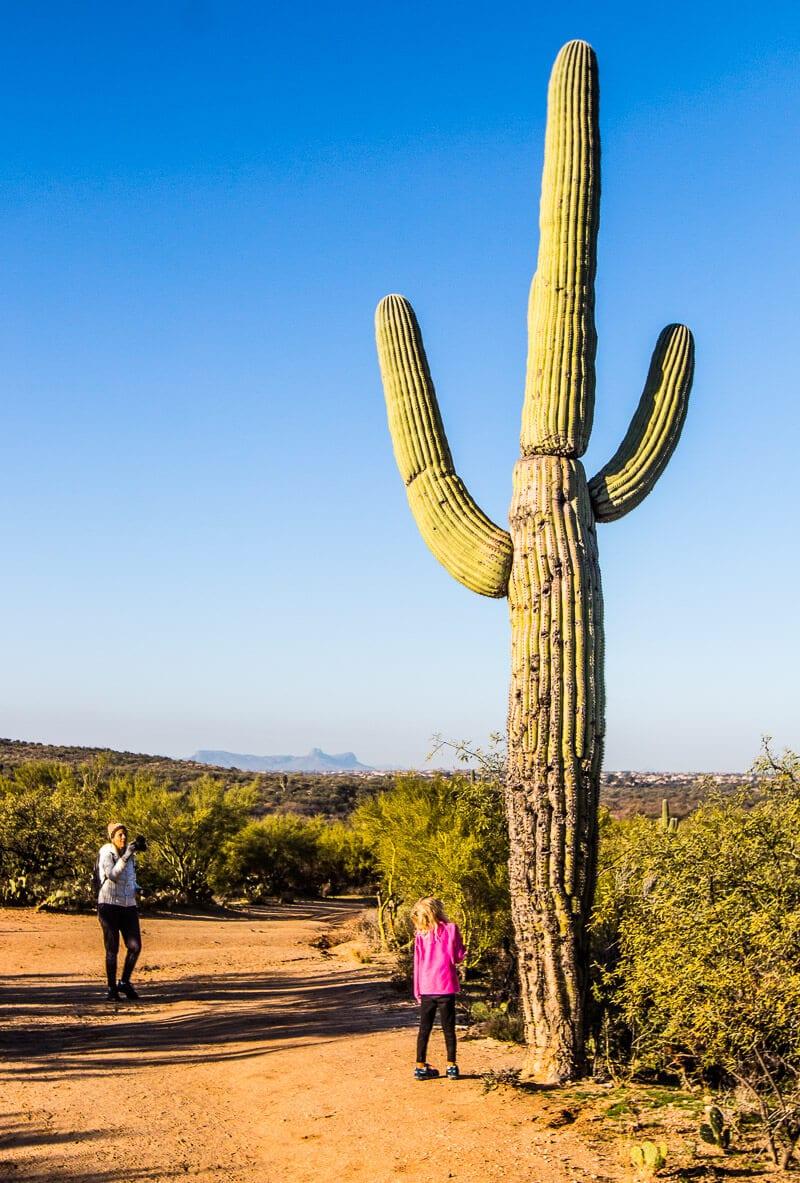 Catalina State Park, Tuscon, Arizona