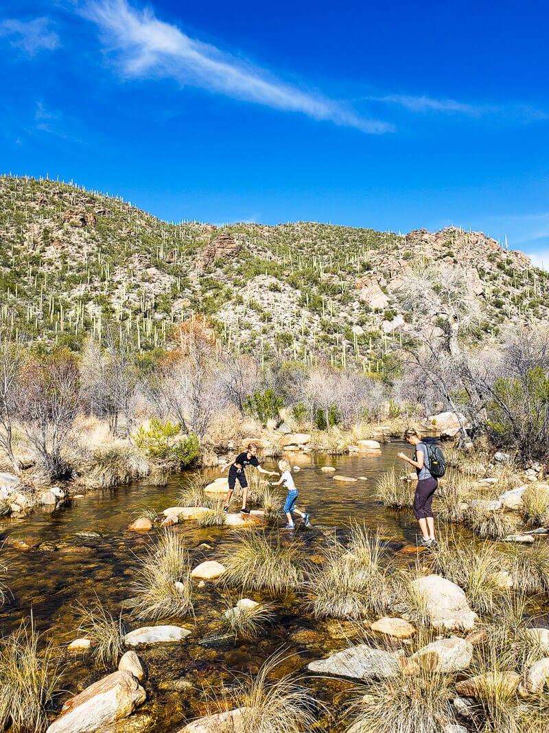 Sabino Canyon Tucson