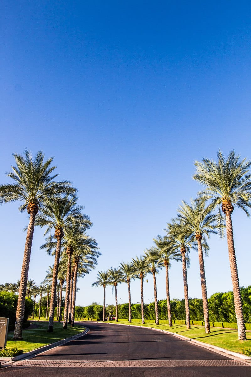 Westin Kierland Resort & Spa in Scottsdale, Arizona