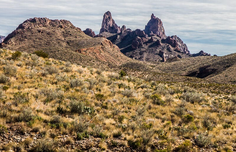 Mule Ears, Big Bend NP