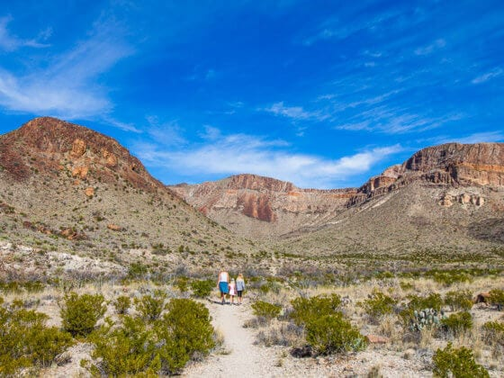 Ross Maxwell Drive in Big Bend National Park