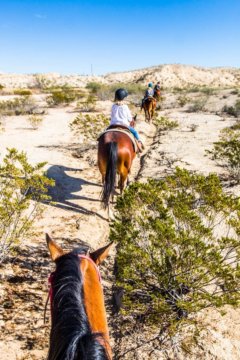 lajitas-texas-horse-ride-5-1 ▷ Comenta en My Fun Horse Ride in Lajitas, Texas por Craig