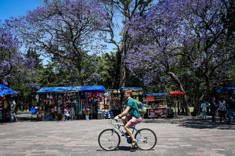 Rent a bike in Mexico City