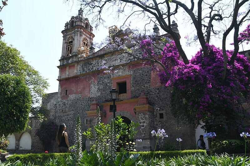 San Angel Neighborhood