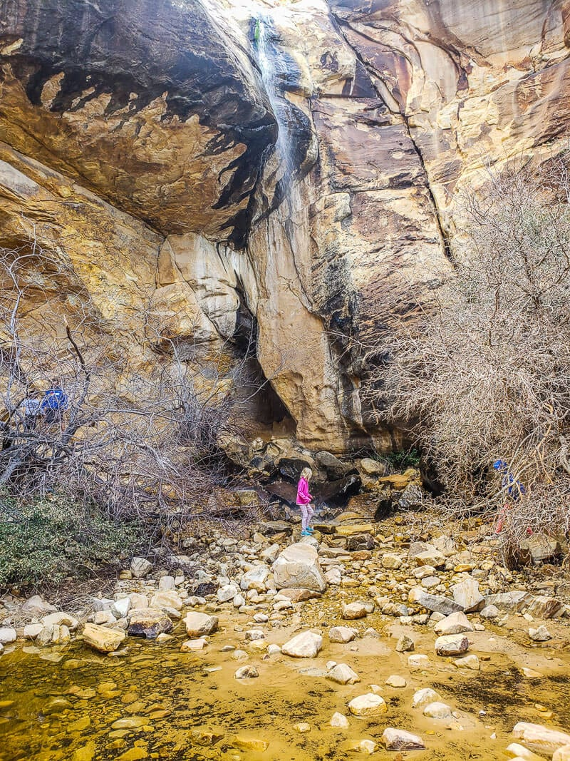 Red Rock Canyon National Recreation Area, List Creek Children's discovery trail