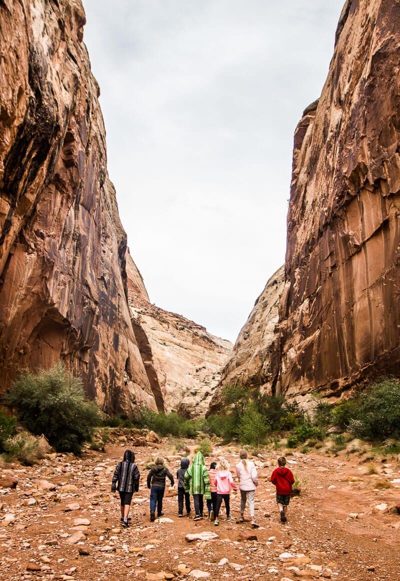 Capitol Gorge hike in capitol Reef National Park in Utah