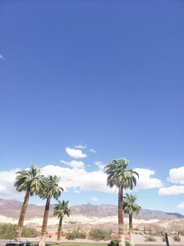 Week 24 The Ultimate Final Desert Experience Death