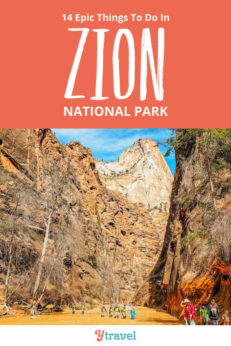 what to do in zion national park with kids