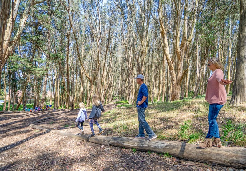 Lovers Lane and woodline Presidio