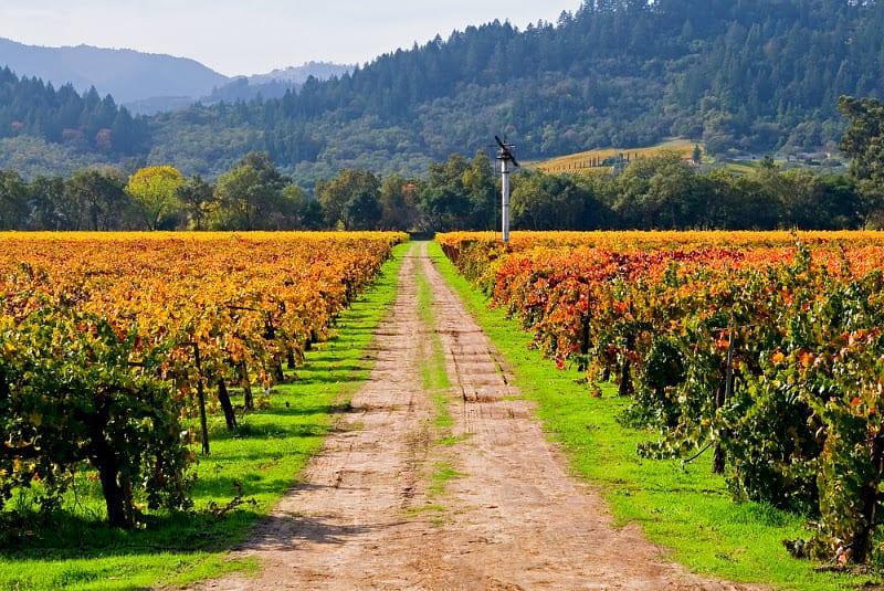 best places california
