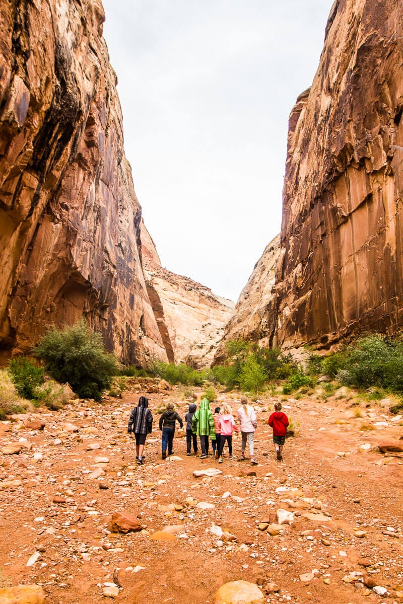 Capitol Gorge Trail - Best hikes in Capitol Reef National Park