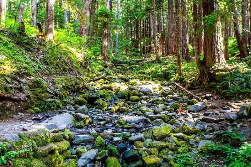 Soleduck Falls Trail