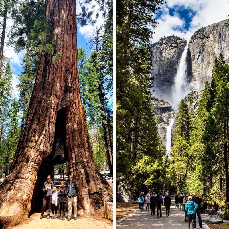 Mariposa Grove et Lower Yosemite Falls