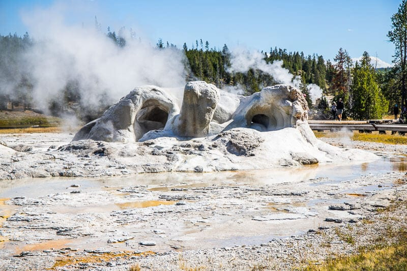 Grotto Geyser, Upper Geyser Basin Loop Trail