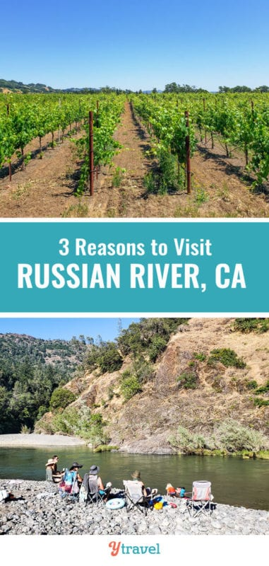 Russian River in California is just north of San Francisco and is a region filled with great wine, beer, and scenery. #California #travel
