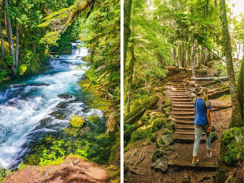 Koosah Falls, Trail, McKenzie River