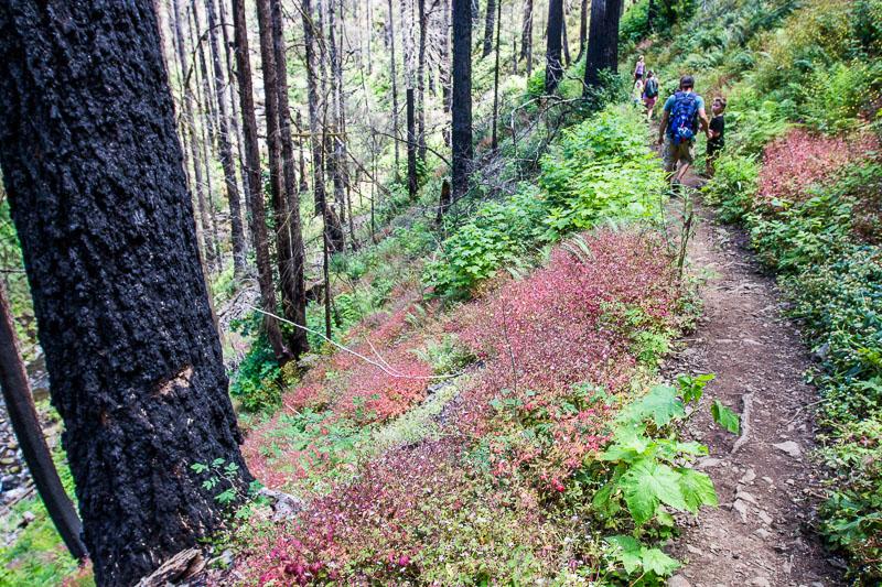 Multnomah Falls Trail, Oregon