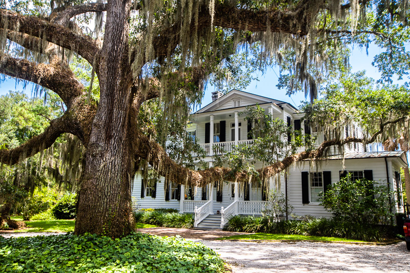 Best things to do in Beaufort, South Carolina