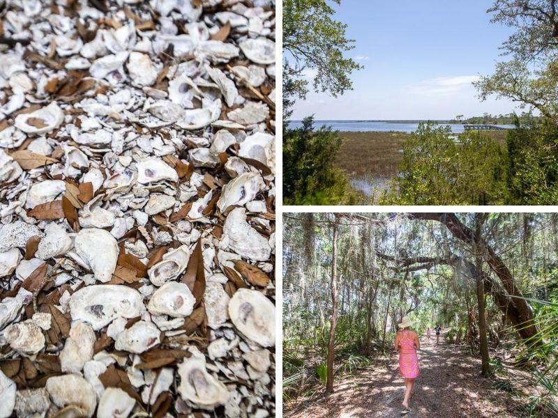 shell mound attraction cedar key