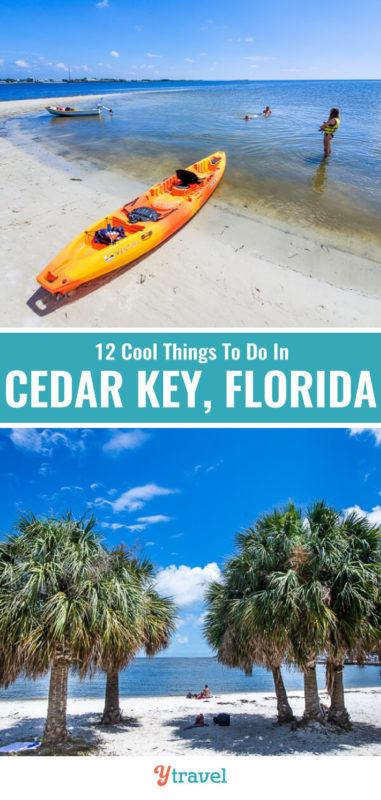 fun things to do in cedar key