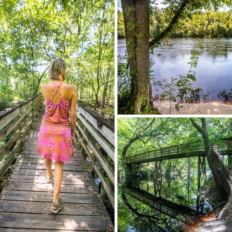 Suwannee River State Park, Florida