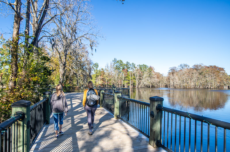 Boardwalk beside to the Waccamaw River