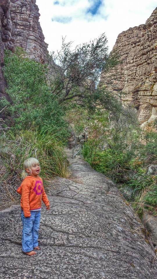 pinnacles hike grampians national park victoria australia (13)