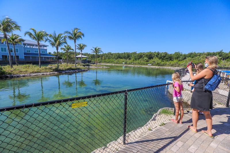 Florida Oceanographic Coastal Center, Stuart