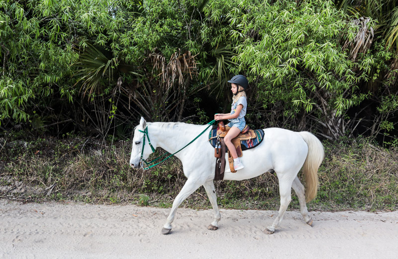 Horse ride with Greenridge Stables in Florida