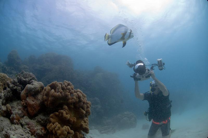 Gary Arndt great barrier reef