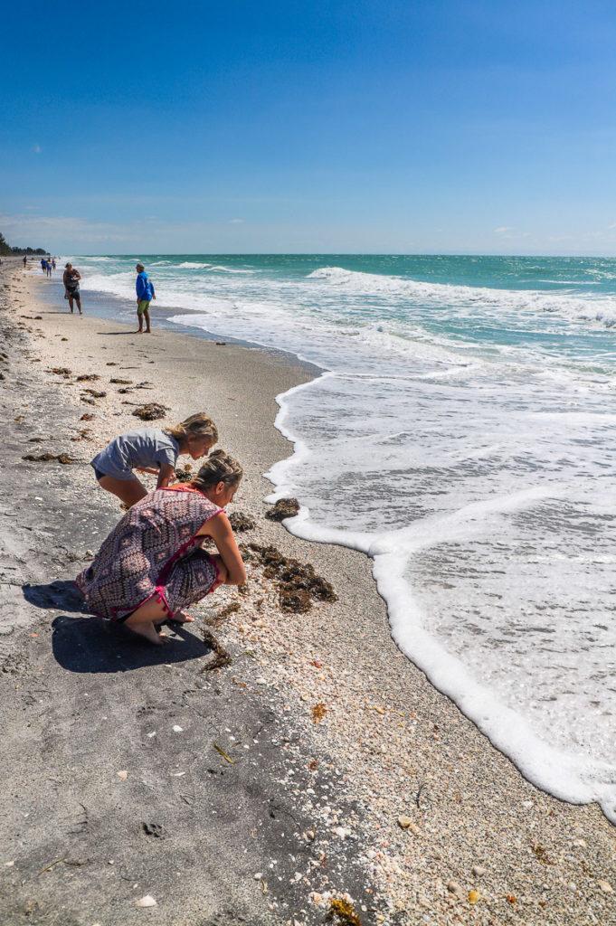 Shark Teeth Hunting at Blinds Pass Beach, Florida