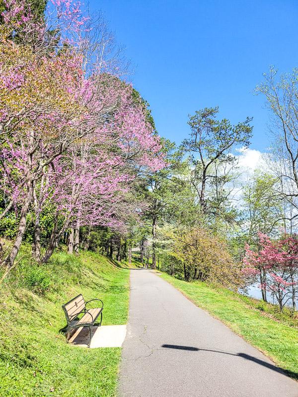 lake junaluska walking trail