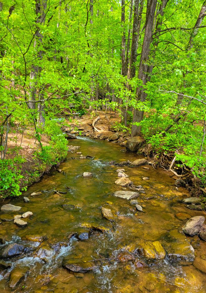 Stream in Amicalola Falls State Park, Georgia