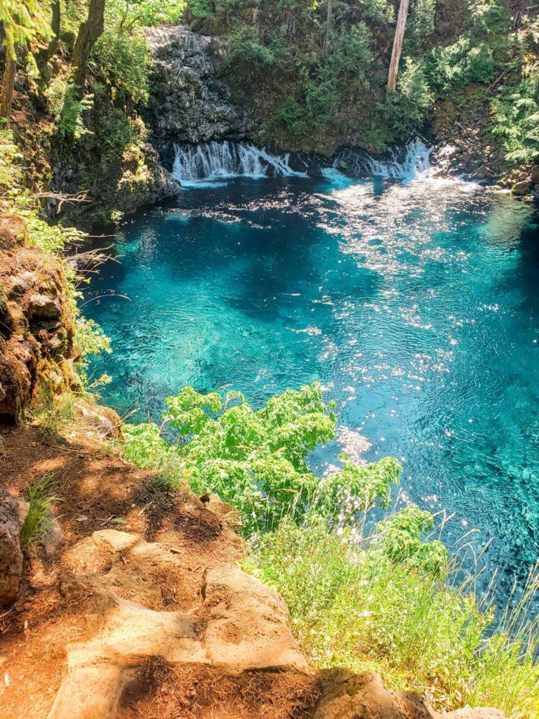TAmolitch the blue pool trail mckenzie river oregon