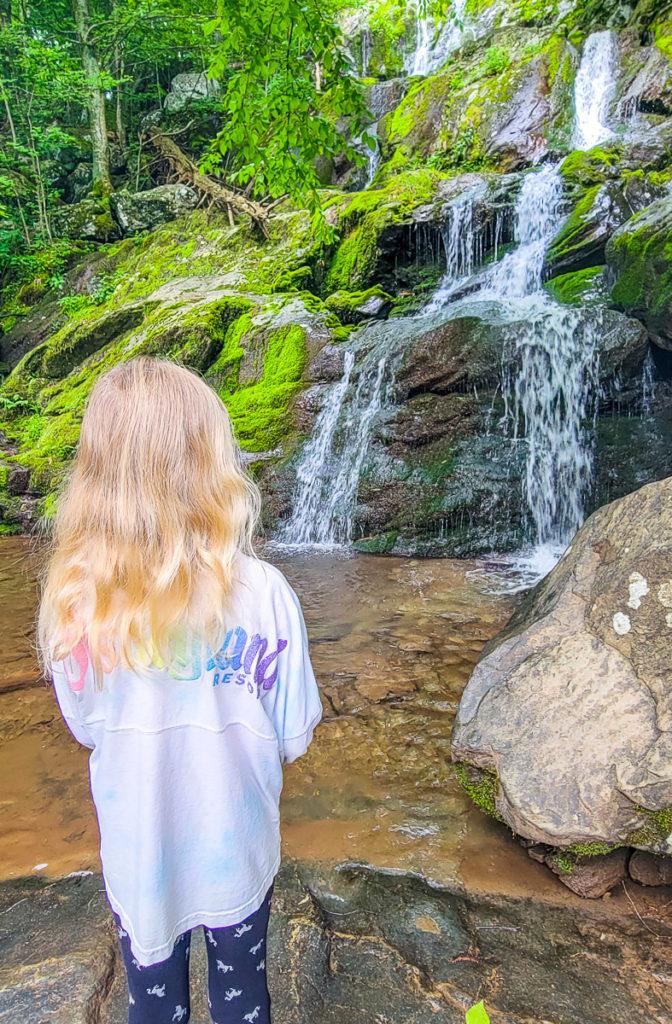 Dark Hollow Falls Trail, Shenandoah National Park, Virginia