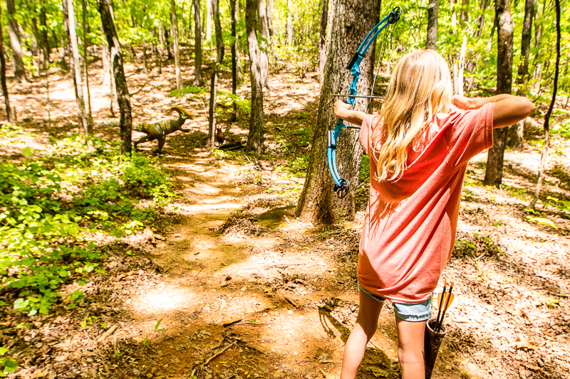 3D Archery at Amicalola Falls State Park