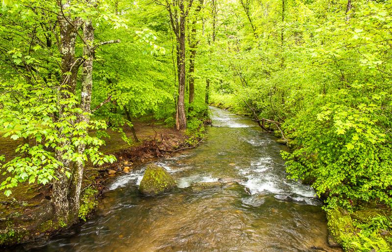 Stream in Unicoi State Park, GA